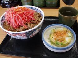牛丼 001 (3).jpg