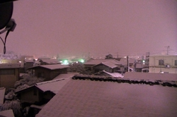blog2011大雪 001.jpg