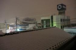 blog2011大雪 002.jpg